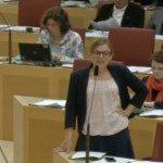 Katharina Schulze erwidert Herrn Heike (CSU)