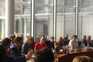 Katharina Schulze beim PAG-Fachgespräch in Berlin